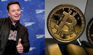 Elon Musk już nie lubi bitcoina? Sensacyjna decyzja bilionera. Na dobre zakończy krypto-hossę?